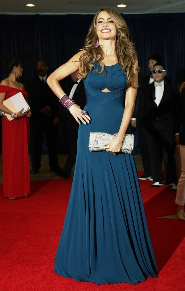 Actress Sofia Vergara arrives on the red carpet at the annual White House Correspondents' Association dinner in Washington April 27, 2013.