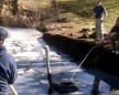 Zookeeper Dives Into Icy water To Rescue Ostrich