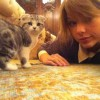 Photo Credit: Taylor Swift via Twitter - Taylor Swift and her cat Meredith