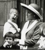 Princess Diana Prince Harry William