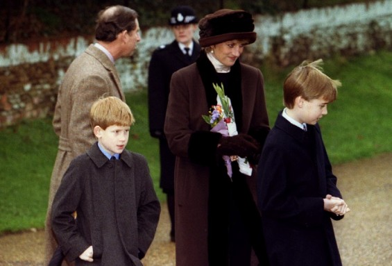 Princess Diana Prince William Prince Harry