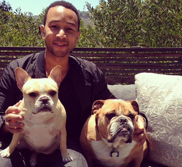 John legend poses with his dogs pippa and puddy photo instagram