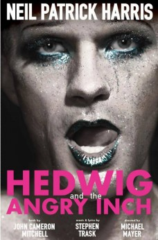 Neil Patrick Harris (Hedwig and the Angry Inch)