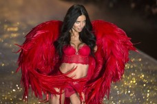 Adriana Lima at the 2013 VS Fashion Show