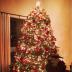 Alessandra Ambrosio's Christmas Tree, 2013