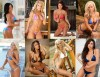 101 Hooters Girl contestants are vying for your vote to become the next Hooters Viewer's Choice Winner!