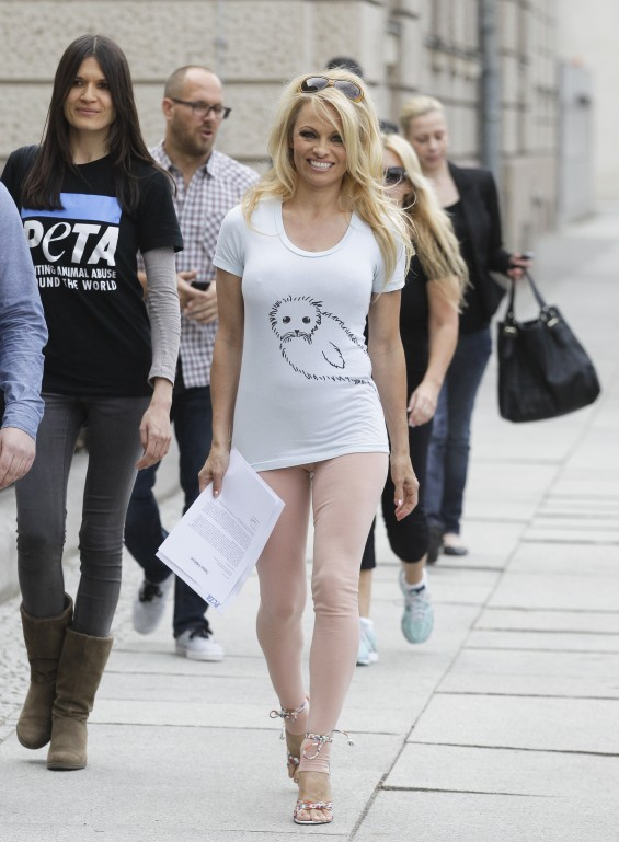 Actress Pamela Anderson Pictured Above