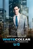 White Colalr