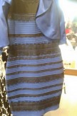 Blue and Black Dress Debate