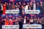 'The Voice' Season 8 Top 20