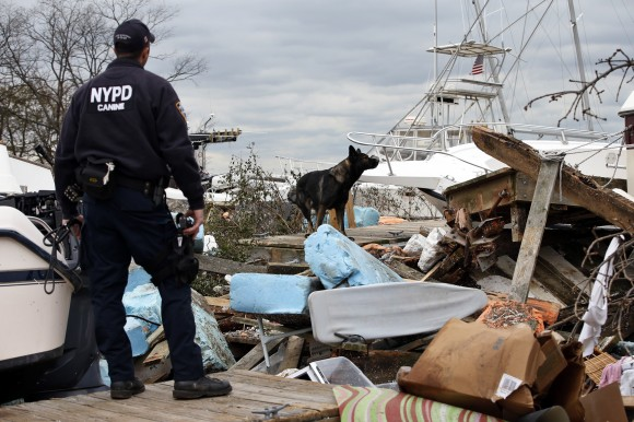 New York City Police Emergency Service K9 Unit officer Chris Theofield (L) and his partner search dog Brutas search for possible victims bodies amid boats and debris washed ashore by Hurricane Sandy o