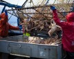 'Deadliest Catch' Cast Unloading Crabs