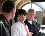 Sean Murray, Pauley Perrette and Mark Harmon