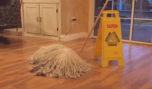 Komondor Dog looks like a mop