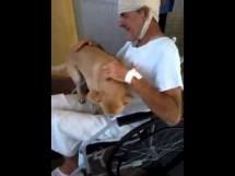 Man And Dog Reunite After 8 Days